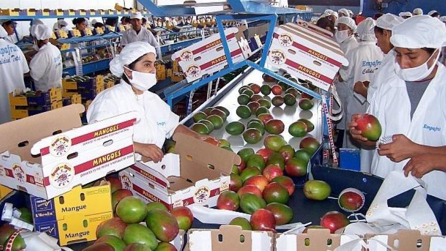 Aumenta 19% superávit agroalimentario al primer semestre