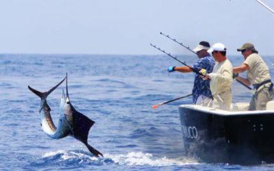Pesca y acuacultura, temas de prioridad nacional: Sader