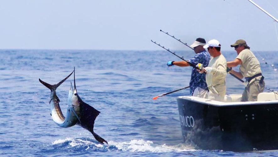 Orientan al sector pesquero y acuícola a una mejor producción
