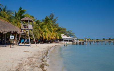 Urgente dar a conocer al mundo atractivos turísticos que ofrece México: Concanaco