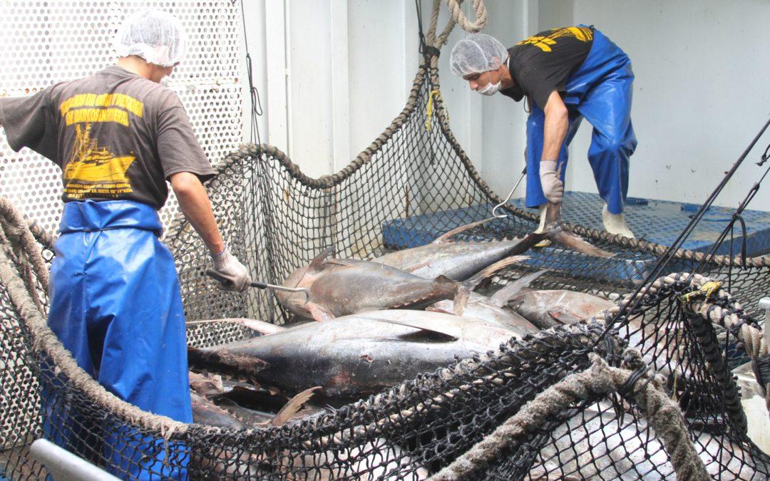 Acuerdan pesca sustentable  en norte del Golfo de California