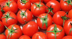 Sader reconoce labor de industria del tomate para el acceso a mercado de EU