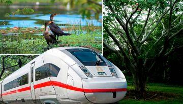 Tren Maya invertirá en rescate de la Reserva Ecológica Cuxtal en Mérida