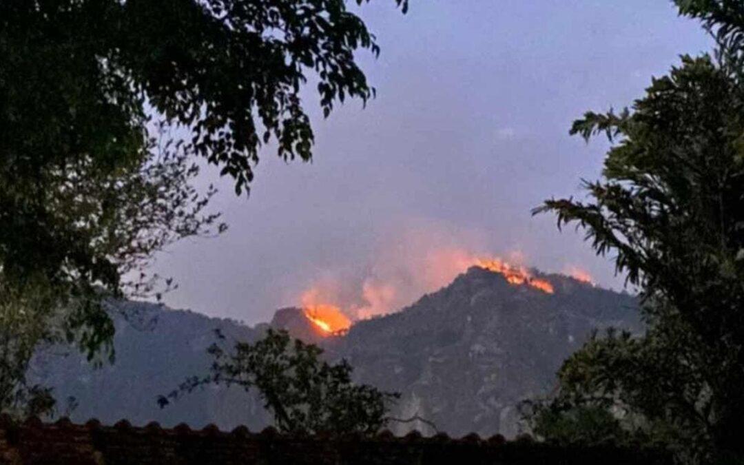 Piden a Ejército Plan DN-III para mitigar incendios forestales
